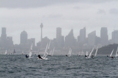 Some head back from Watsons Bay